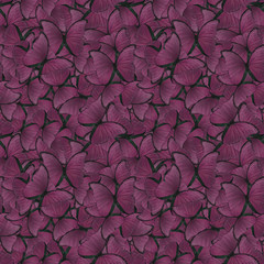 seamless background from purple morpho