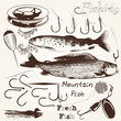 Collection of vector hand drawn fishes and hooks for fishing sea