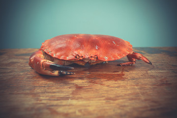 Red crab on wooden surface