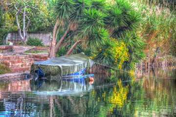 Boat in a tropical shore