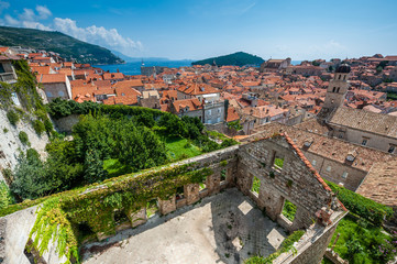 Town of Dubrovnik with old foliage covered house