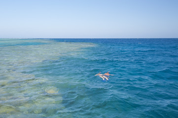 Couple snorkeling on tropical reef
