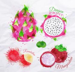 Exotic fruit watercolor dragon fruit, rambutan, mangosteen