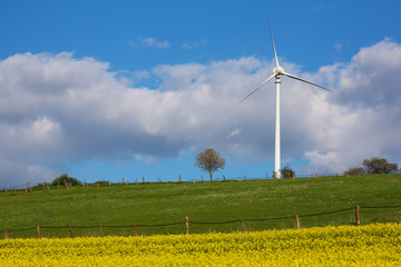 Windrad in Frühlingslandschaft