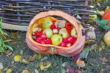 Basket with apples and rowan