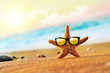 Starfish in sunglasses