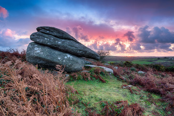 Cornish Moorland