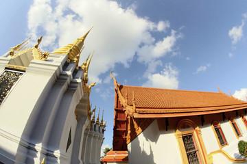 Art and line of wat tung sri wirai temple , baan cheetuan , khua