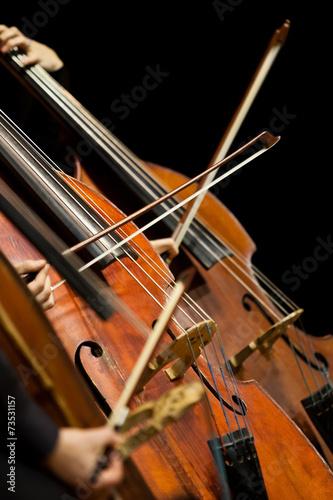Fragment Bass Symphony Orchestra - 73531157