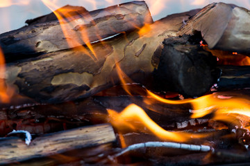 fire from burning firewood