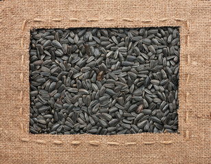Frame made of burlap with the line lies on sunflower seeds