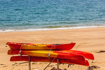 Jersey -  Wassersport