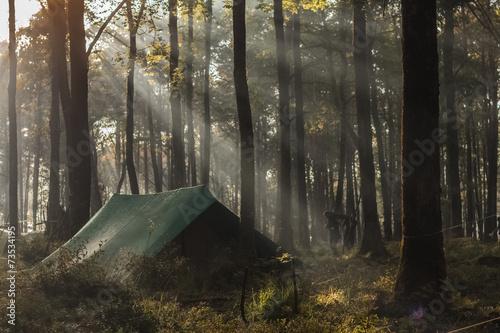 Tenda nel bosco