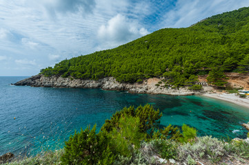 Turquoise bay with sandy beach and pines