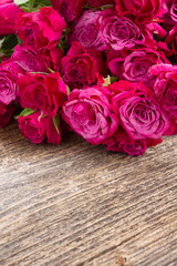pile  of mauve roses