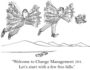 """Welcome to Change Management 101.... free falls."""