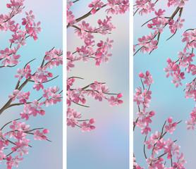Spring Cherry Sakura Banners