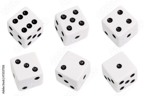 canvas print picture White dice