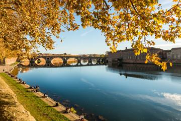 La Garonne et le Pont Neuf, Toulouse