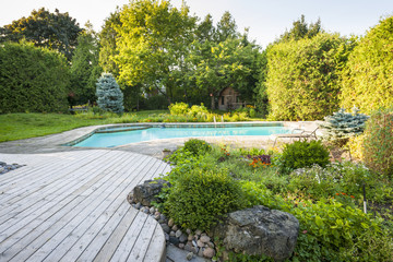 Garden and swimming pool in backyard