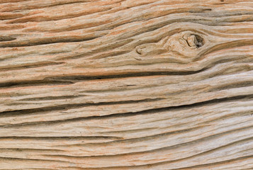 side view of old wood texture