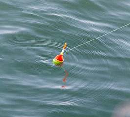 float for fishing in water