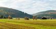 canvas print picture - Blick über die Wiesen am NSG Gelängebachtal in Medebach