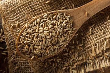 Organic Dry Raw Rye Grain