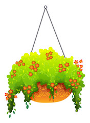 A hanging houseplant