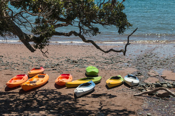 empty kayaks on sandy beach
