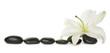 Leinwandbild Motiv White lily and stones