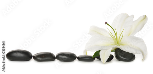 White lily and stones - 73554561