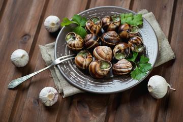 Bourguignonne snail au gratin, horizontal shot