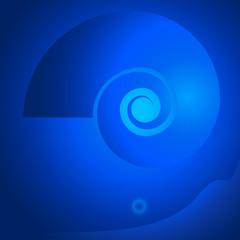 nautilus-seashell-background-blue-ocean