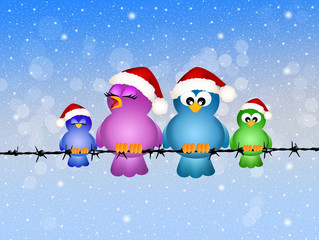 Birds at Christmas