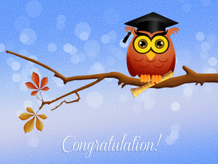 congratulation for graduation