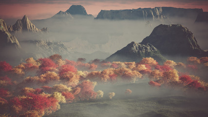 Aerial of mountain landscape with autumn trees in the mist.