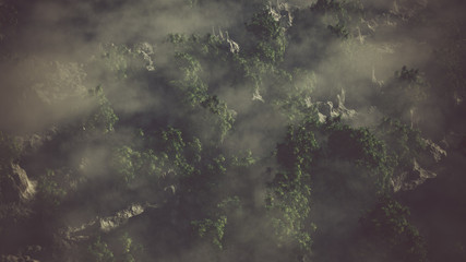 Aerial of rocky landscape with palms in the mist.