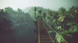 Fototapety Rope bridge in misty jungle with palms. Backlit.