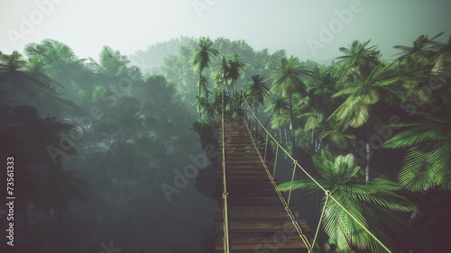 Leinwandbild Motiv Rope bridge in misty jungle with palms. Backlit.