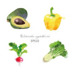 Set of avocado paprika radisch  lettuce