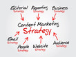 Content Marketing strategy for online business concept, chart