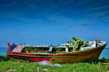 Barca colorata