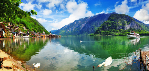beautiful lake with swans in Hallstatt, Austria