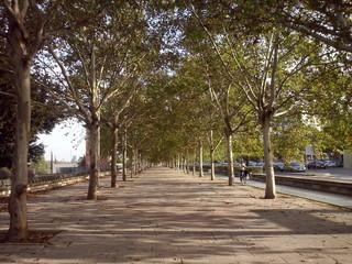 Autumn in seville