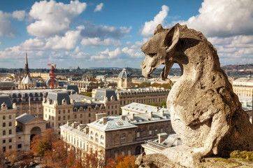 Paris aerial view with Chimera