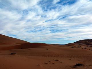 Horizon on Saharan Landscape