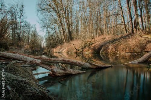canvas print picture Fluss