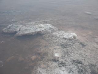 Кристаллы природной соли на берегу соленого озера