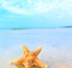Star Beach Sea